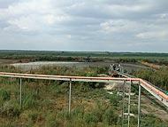 Ферма КРС. Киевская область.